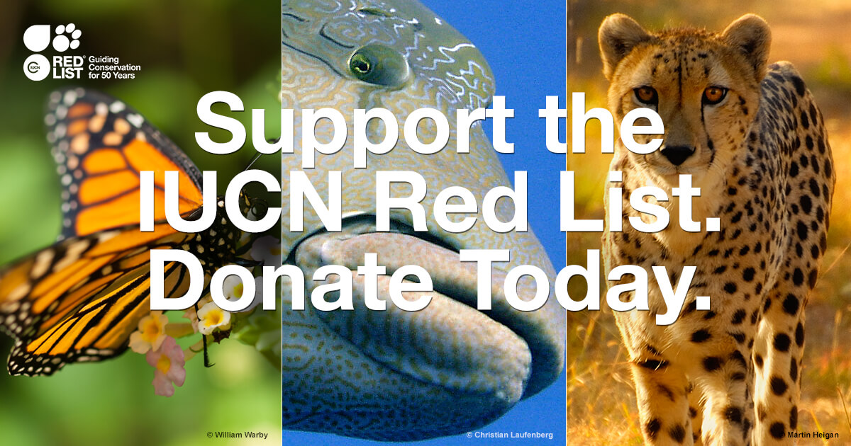 Donate Iucn Red List Of Threatened Species
